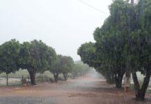 Chuva - Jornal bom dia