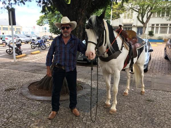 Cavalo - Jornal bom dia